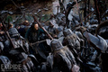 The Hobbit: The Battle Of The Five Armies - the-hobbit photo