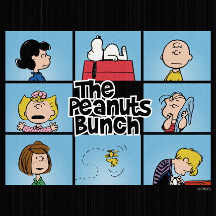 Peanuts wallpaper containing anime called The Peanuts Bunch