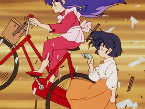 Uninvited Guests, Destructive invites herself into Akane's family dojo (ra(