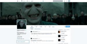 Voldemort Twitter profaili (French)