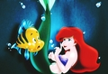 Walt Disney Fan Art - Flounder & Princess Ariel - walt-disney-characters fan art