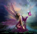 beauty fae - fairies photo