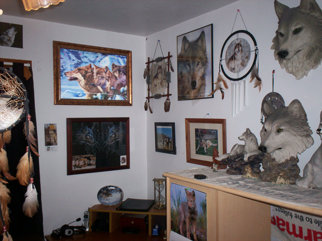The Lilly_the_wolf Pack Images Her Is My Bedroom Also You