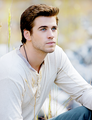 Gale - the-hunger-games photo