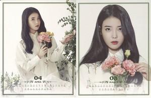 141223 아이유 2015 Calendar Scans