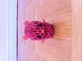 3D Origami Bear