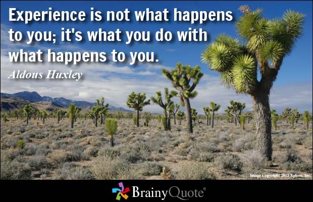 Quotes For Everyone Images Brainy Quote Wallpaper And Background Magnificent Brainy Quotes
