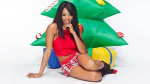 क्रिस्मस Divas 2014 - Alicia लोमड़ी, फॉक्स