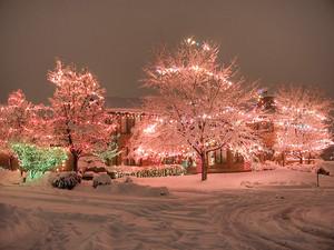 giáng sinh Lights