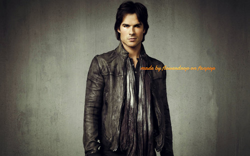 Damon Salvatore پیپر وال possibly with a well dressed person called Damon Salvatore ✯
