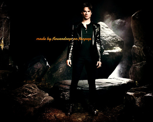 Damon Salvatore wallpaper with a concert titled Damon Salvatore ✯