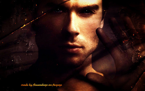 Damon Salvatore wallpaper called Damon Salvatore ✯