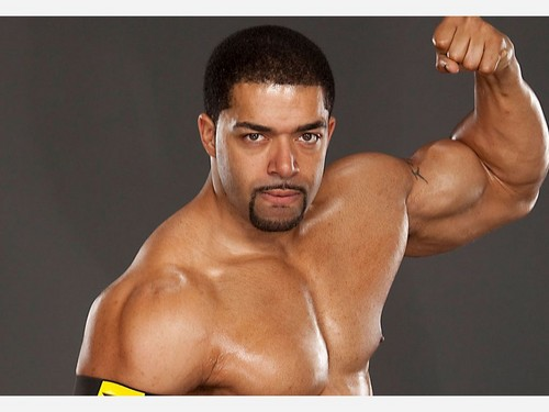 WWE images David Otunga HD wallpaper and background photos ...