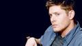 Dean Winchester - jensen-ackles photo