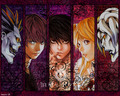 Death Note - misa-amane wallpaper