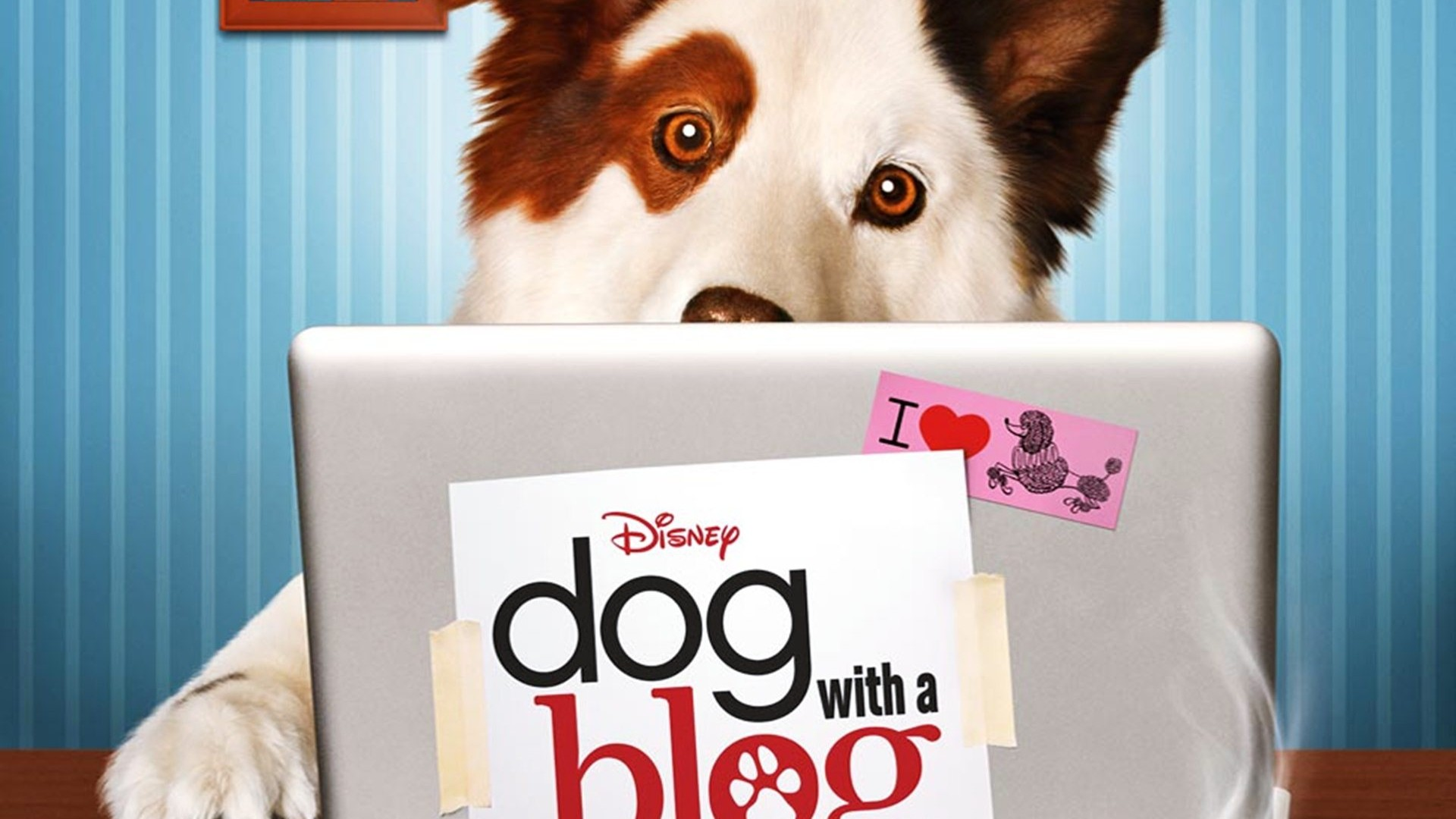 Dog With A Blog Dog With A Blog обои 37996189 Fanpop