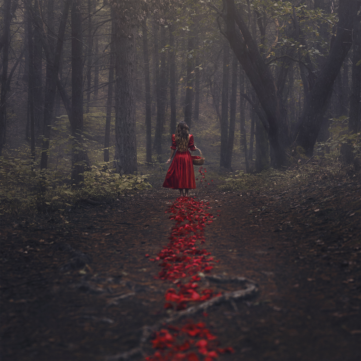 Dark Romantics Images Fairy Tale HD Wallpaper And Background Photos