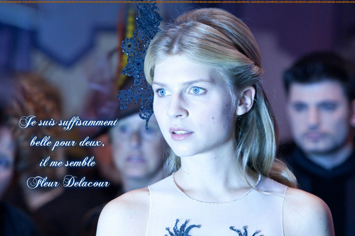 Harry Potter پیپر وال with a portrait called Fleur Delacour quote