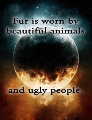 fur, manyoya is Worn v2