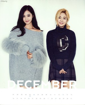 Hyeoyon and Yuri (SNSD) - 2015 Calendar