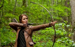 Katniss is near a आग (initiate) the right ऐरो in a beautiful animal