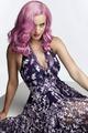 Katy Perry              - katy-perry fan art