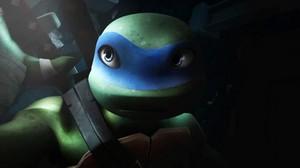 Leonardo shadow