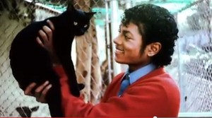 MJ with Cat :D LOL!!