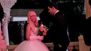 Nicki and itik jantan, drake
