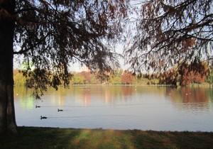 Parcul Titan IOR Alexandru Ioan Cuza Bucuresti