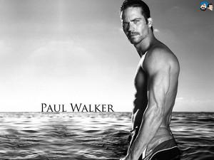 Paul Walker ( 1973 - 2013)