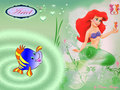 Ariel and Flounder - disney-princess wallpaper