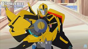 RID Bumblebee