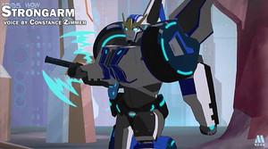 RID Strongarm
