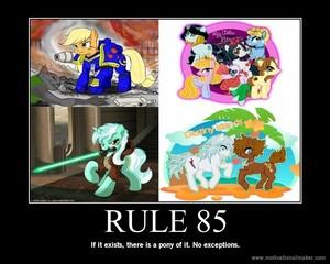 Rule 85