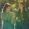 Sansa and Margaery - sansa-stark fan art
