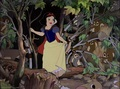 Snow White Screencap. - mason-forever wallpaper