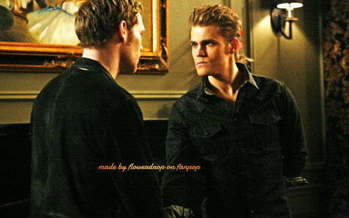Stefan Salvatore 壁纸 probably containing a business suit called Stefan 壁纸 ✯