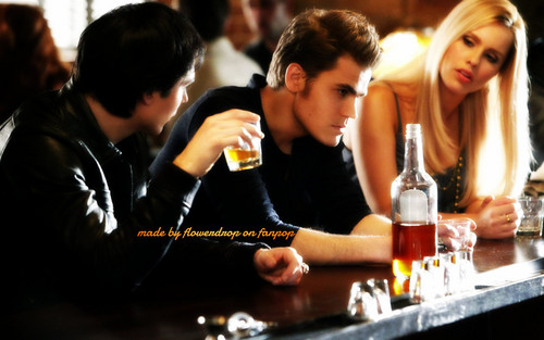 Stefan Salvatore wallpaper with a brasserie titled Stefan wallpaper ✯