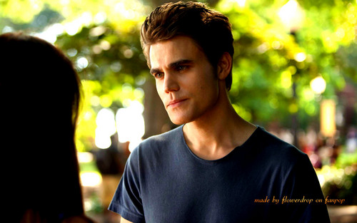 Stefan Salvatore wallpaper probably with a portrait called Stefan wallpaper ✯