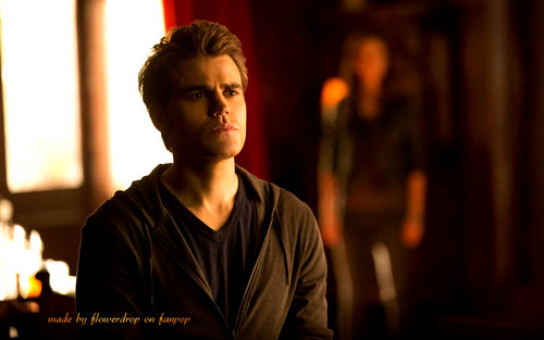 Stefan Salvatore wallpaper called Stefan wallpaper ✯