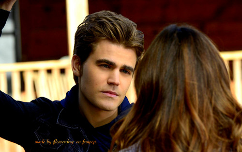 Stefan Salvatore wallpaper possibly with a portrait entitled Stefan wallpaper ✯