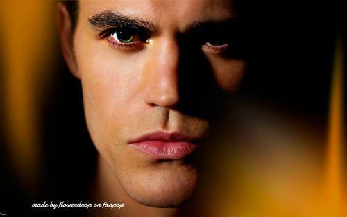 Stefan Salvatore wallpaper probably containing a portrait titled Stefan wallpaper ✯