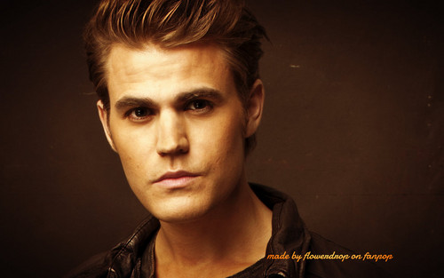 Stefan Salvatore 壁纸 probably with a portrait entitled Stefan 壁纸 ✯
