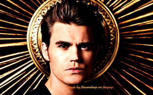 Stefan Salvatore wallpaper entitled Stefan wallpaper ✯