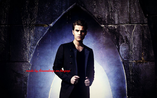Stefan Salvatore 壁纸 with a business suit titled Stefan 壁纸 ✯