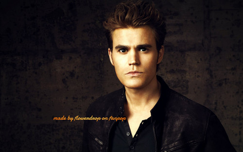 Stefan Salvatore 壁纸 possibly containing a well dressed person entitled Stefan 壁纸 ✯