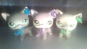 THESE ARE THE CRYSTAL 고양이 !! SO CUTE