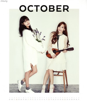 Taeyeon and Sooyoung (SNSD) - 2015 Calendar