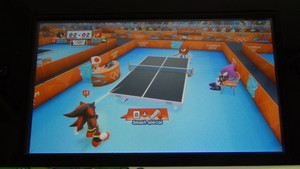 Tenis Table-Shadow Vs Knuckles